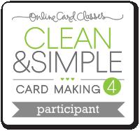 CS4_participant